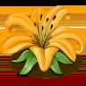 http://vkontakte.ru/images/gifts/96/104.png