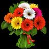 http://vkontakte.ru/images/gifts/96/120.png