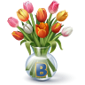 http://vkontakte.ru/images/gifts/96/68.png